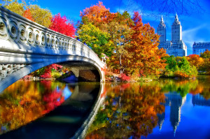 nyu-york-ssha-centralnyy-park