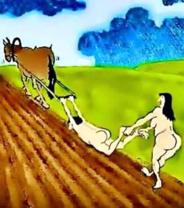 organic.farming
