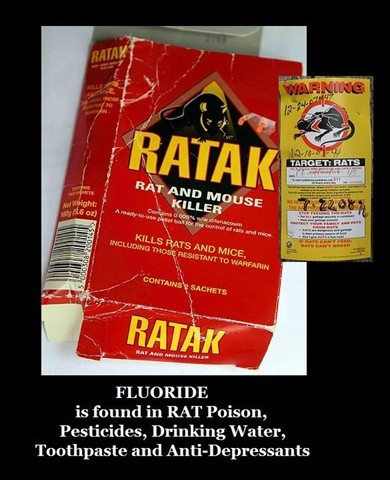 arsenic rat poison. quot;Fluoride is rat poison.