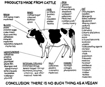 products-made-cattle